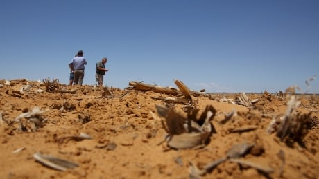 AFRICA-DROUGHT/WFP