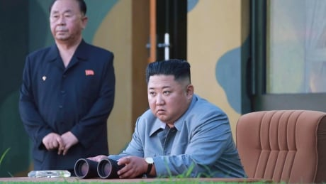 North Korea Projectiles