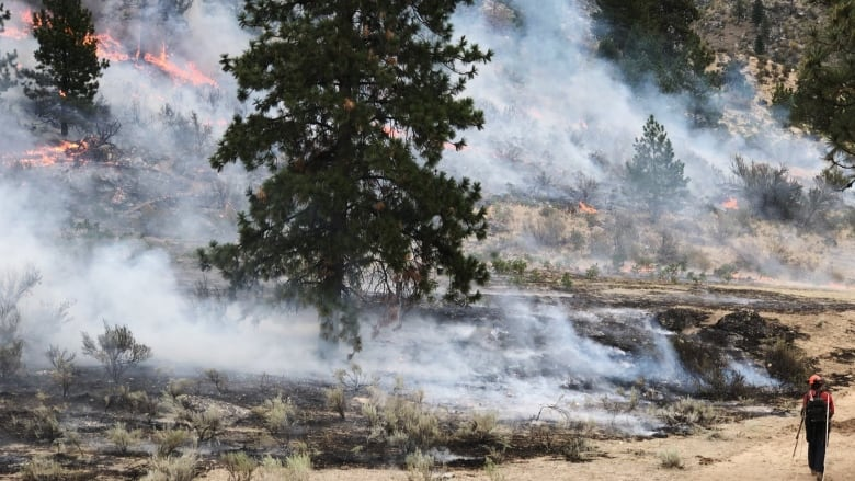 Cool weather limits growth of Eagle Bluff wildfire in Okanagan