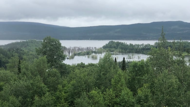 Labrador man stunned by water levels from flooding reservoir at Muskrat Falls