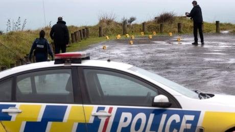 New Zealand Tourist Killed