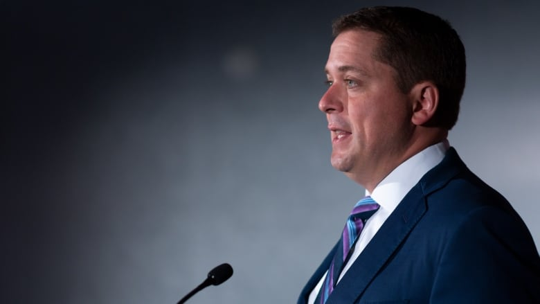 Andrew Scheer calls on Liberal MPs to further probe SNC-Lavalin affair
