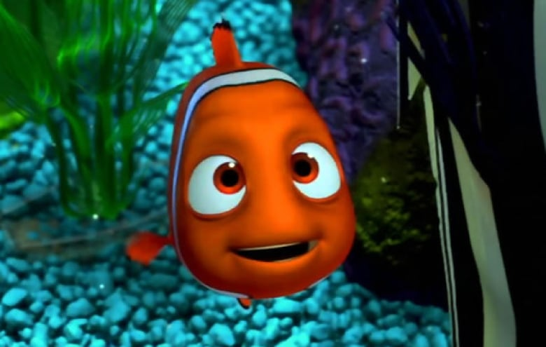 Finding Dory didn't endanger blue tang fish, say ...  Walt Disney Pictures Presents A Pixar Animation Studios Film Finding Nemo
