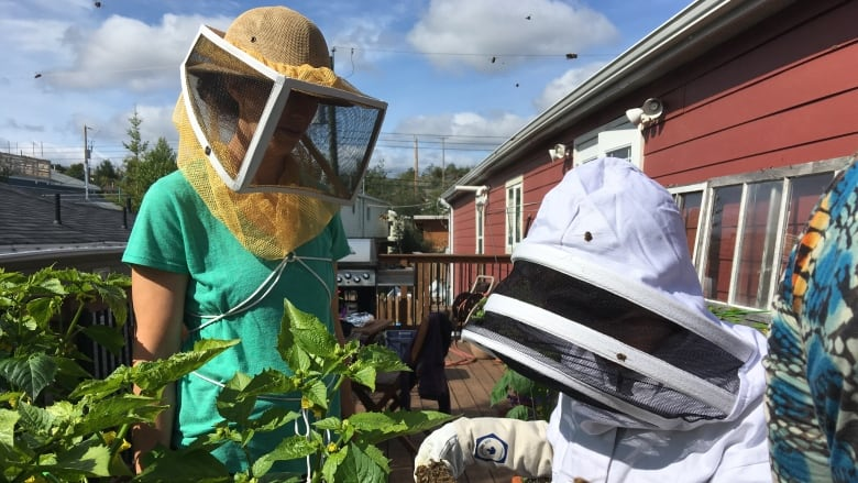 Oh honey! Kids young and old learn the art of beekeeping in Yellowknife