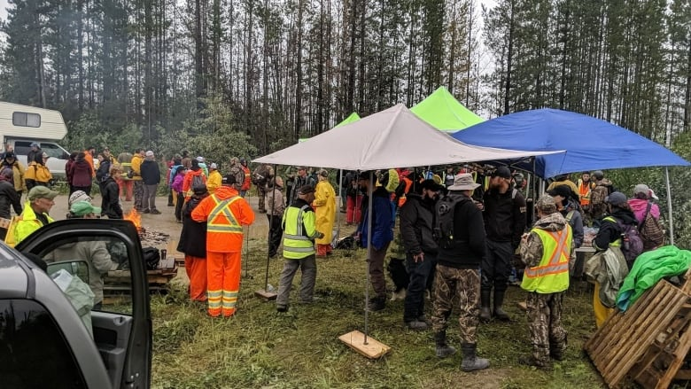'Pure relief': 4-year-old missing overnight in wilds of northern B.C. found safe