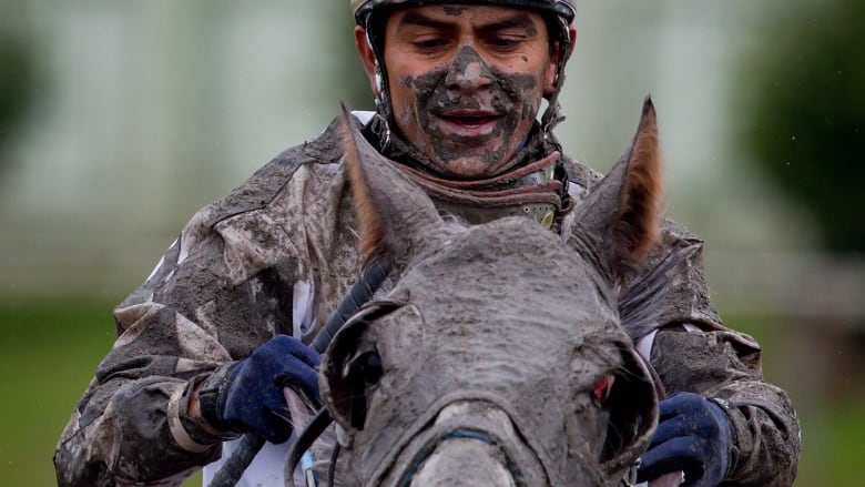 Racehorse owners, trainers left scrambling after surprise raid at Hastings racecourse