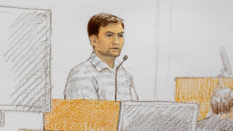 Andrew Berry's testimony like plot of 'bad low-budget movie,' Crown tells murder trial