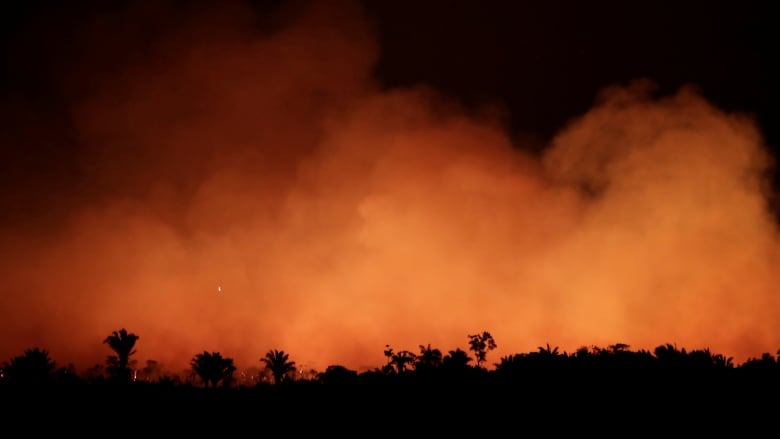 As forest fires rage, experts worry about the future of the Amazon
