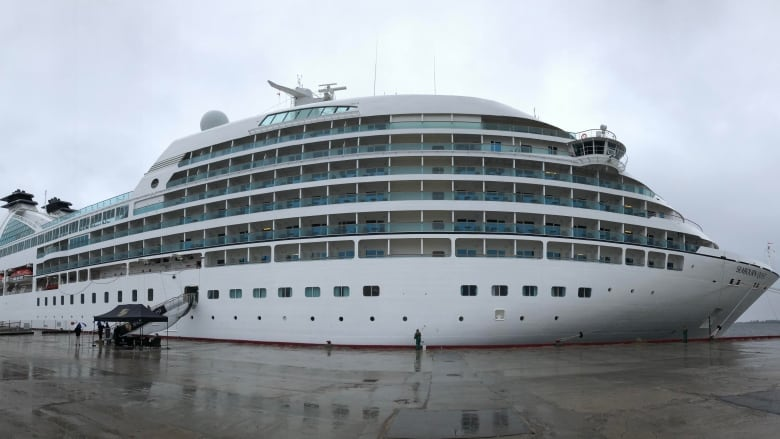 Arts, economy get a boost as 450 cruise ship passengers arrive in Happy Valley-Goose Bay