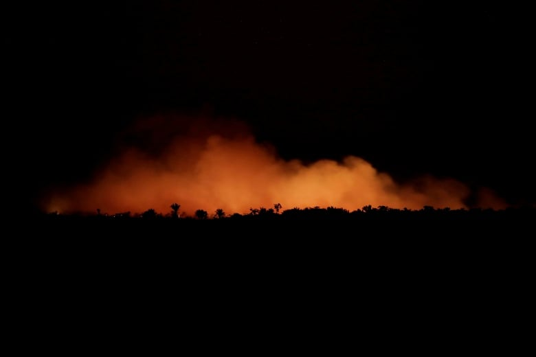 Amazon rainforest fires are a 'very serious threat' but