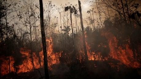 BRAZIL-ENVIRONMENT/WILDFIRES
