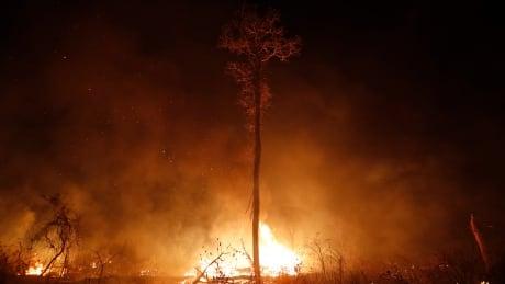 Bolivia Fires