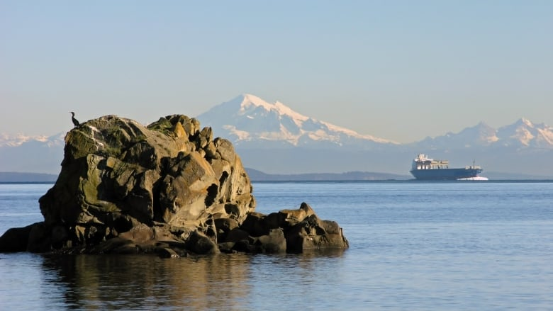 Freighter Traffic Frustrates Gulf Islands Residents Cbc News