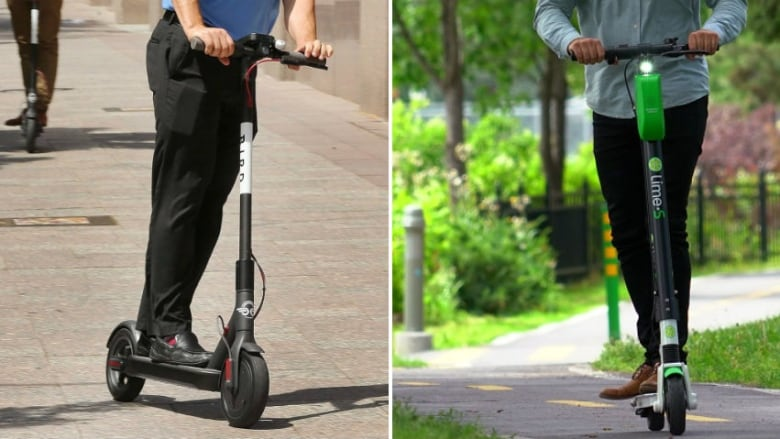 Calgary e-scooters used nearly 10,000 times per day in