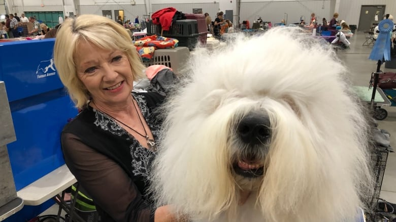 Some of Canada's top dogs on display at Saskatoon's annual