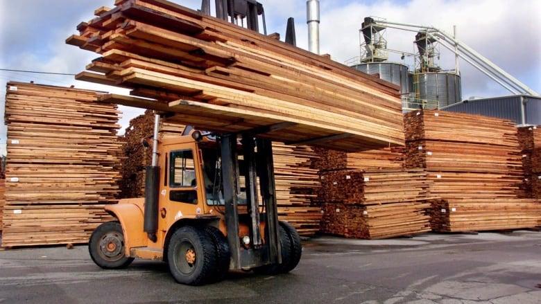 Interfor to close Hammond Cedar sawmill in Maple Ridge | CBC