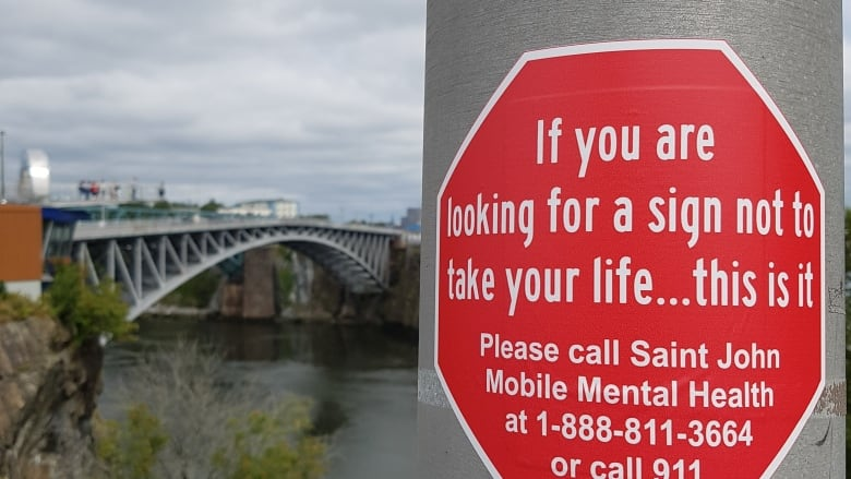 Widow creates stickers for Reversing Falls Bridge to