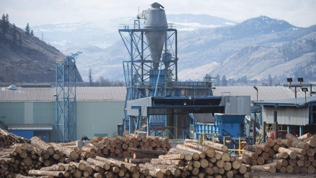 Lumber company Tolko shutting down all B.C. locations for 2 weeks over Christmas