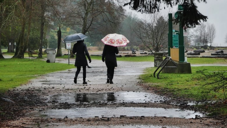 B.C.'s South Coast set for nearly a month's worth of rain this weekend