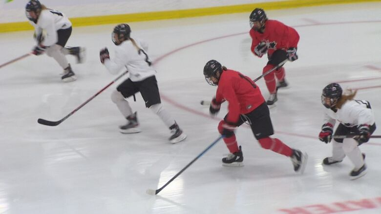 Canadian women hockey players yearn for professional association