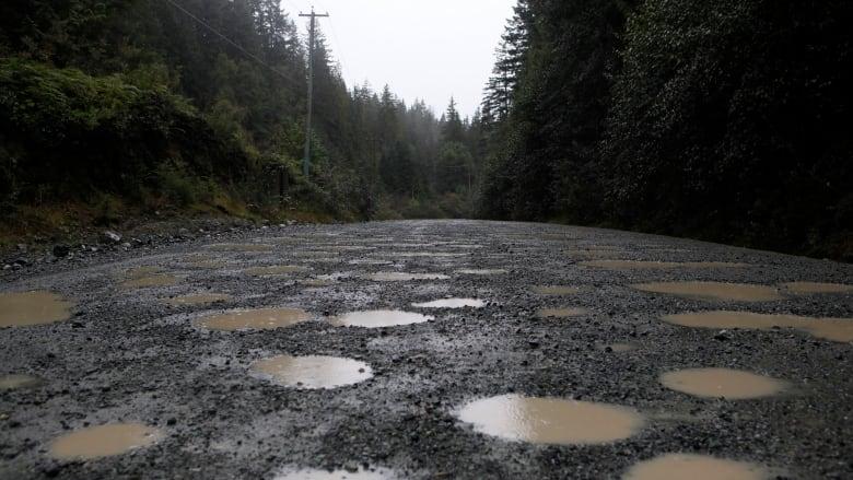 B.C. bus crash survivor starts online petition to improve 'treacherous' Vancouver Island road