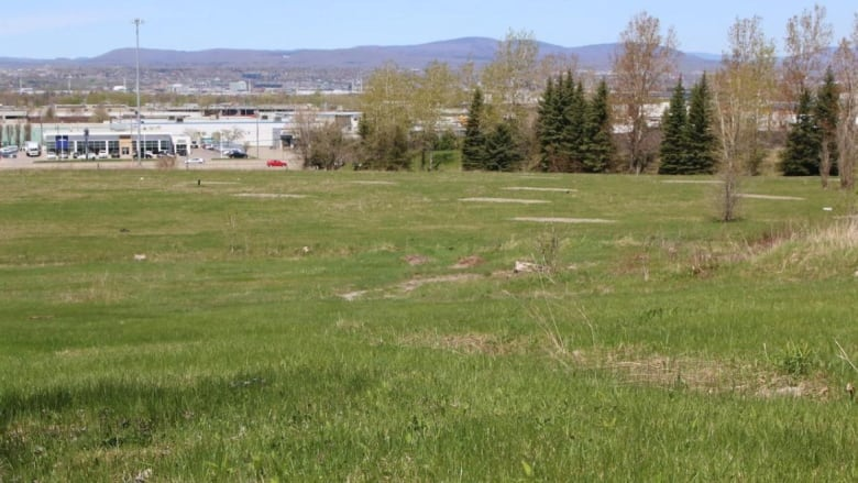 Environment Ministry green-lights Muslim cemetery in Quebec City