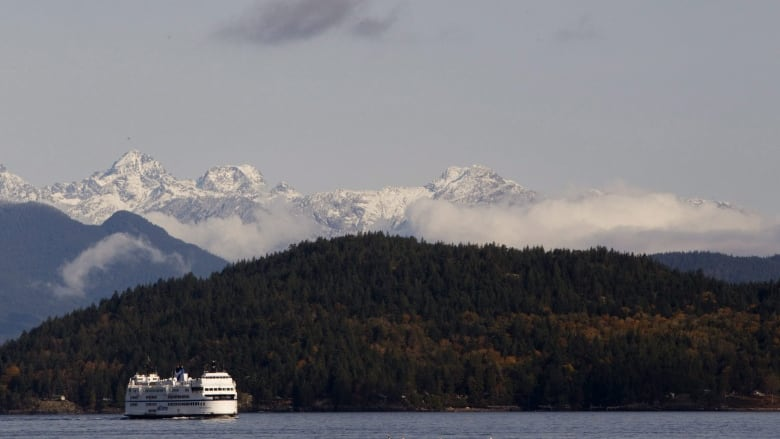 B.C. Ferries cuts sailings on major routes, suspends service on others