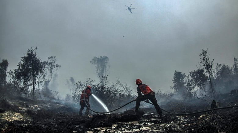 Indonesia sends more troops to combat forest fires