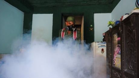 Fumigation in Havana