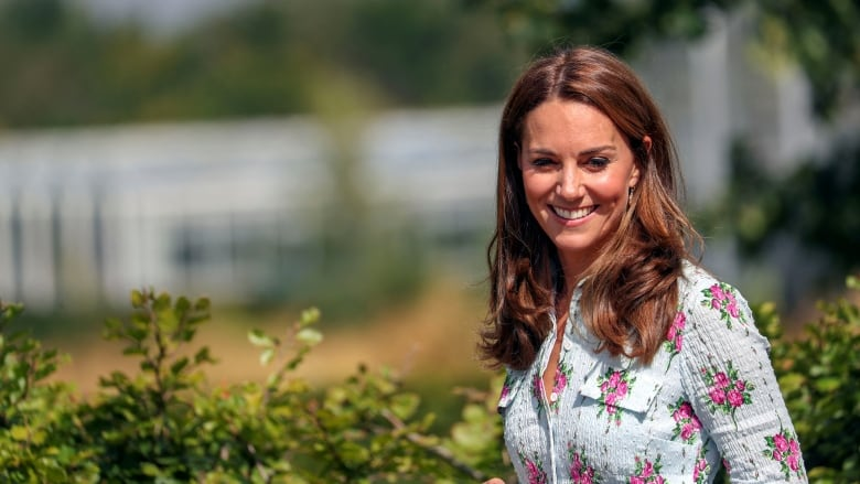 A 'complicated transition': How Kate is stepping up her public role for the royals