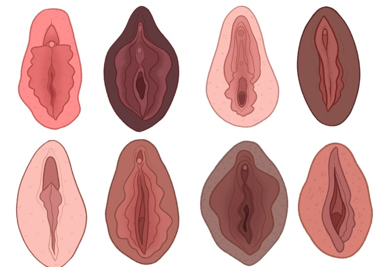Worlds First Vagina Museum Set To Open Next Month In