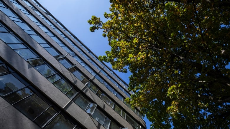 High-density neighbourhoods leave room for trees says Metro Vancouver