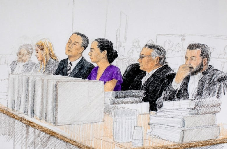 Court documents reveal just how complex and unusual a Meng Wanzhou trial could be