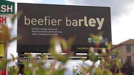 Beefier Barley Billboard