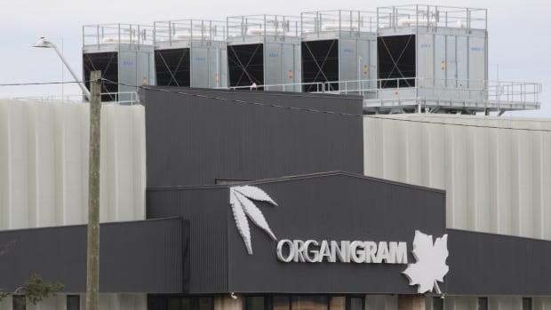 organigram moncton.