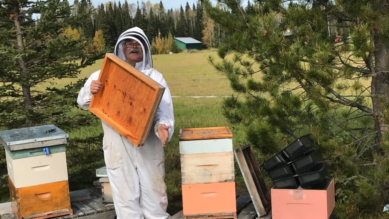 'Bees are calming': Former RCMP chief trades red serge for bee suit