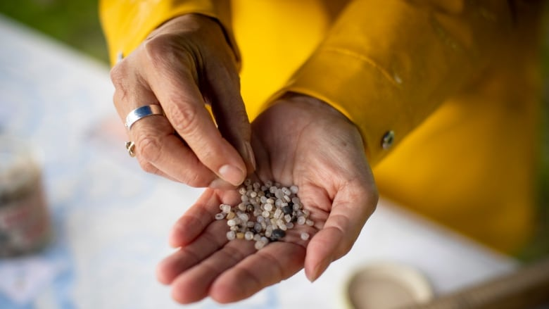 Group calls for plastic pellet regulation after finding widespread pollution