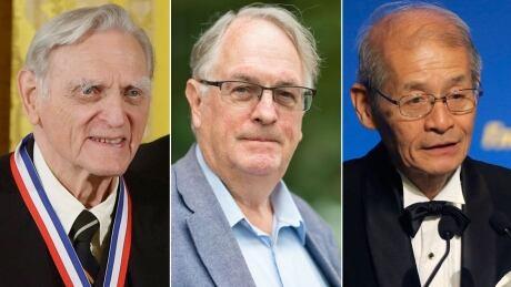 Nobel Prize Chemistry 2019