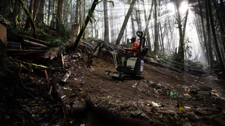 Trail builders carve paths through Squamish rainforest in a labour of love