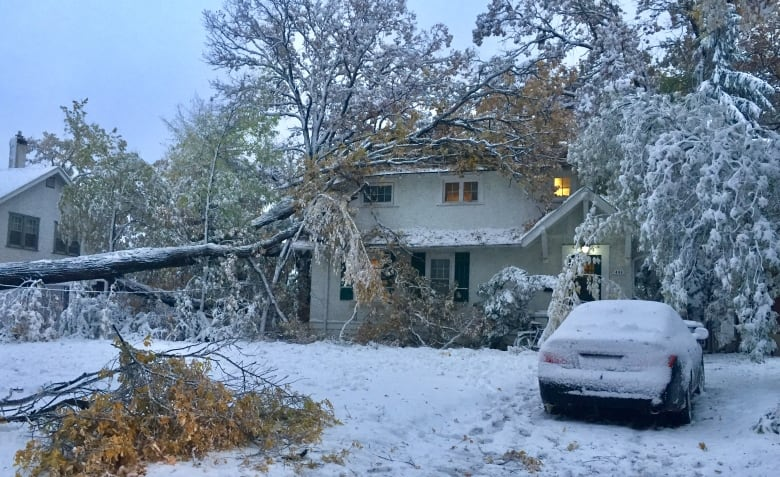 Manitoba Hydro, city crews race to clean up mess after storm pummels southwest