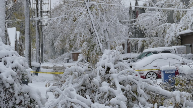 Wintry wallop for Winnipeg leaves whack of cancellations in its wake