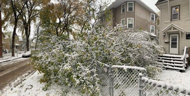https://i.cbc.ca/1.5319376.1570885917!/fileImage/httpImage/image.jpg_gen/derivatives/original_780/winnipeg-storm.jpg