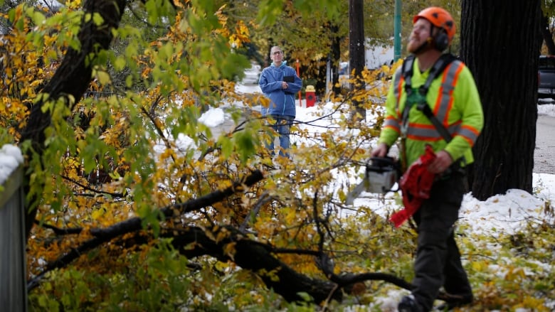 Calgary will send parks staff to help Winnipeg recover from devastating snowstorm