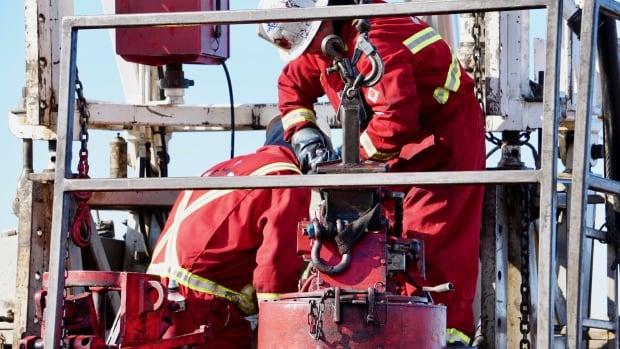 cleaning up old oil wells says Alberta government