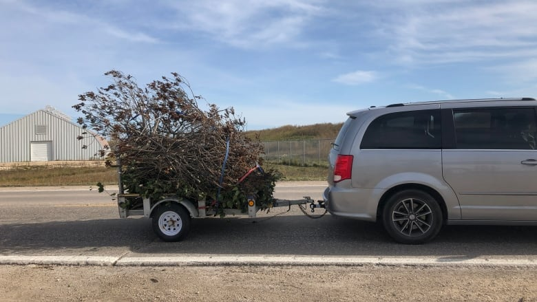 'Like shooting fish in a barrel': Good Samaritan receives $298 ticket for taking downed trees to landfill