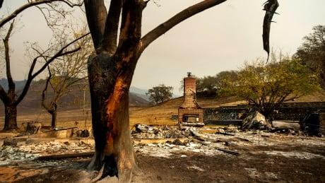 Kincade Fire destruction