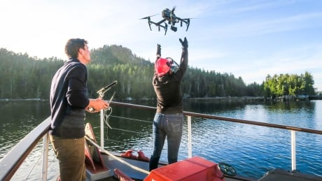 Killer whale drone