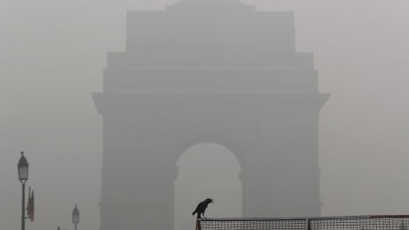 INDIA-POLLUTION/