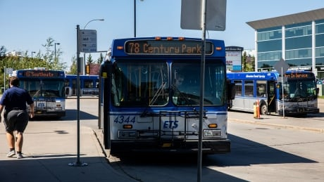 Edmonton Stox - Mill Woods transit station