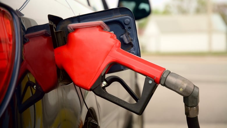 P.E.I. gas price loses last week's increase and then some